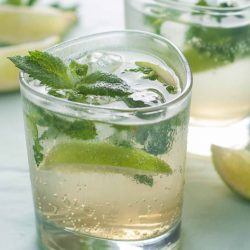 Learn About Gin & Tonic: A Taste of India, August 2