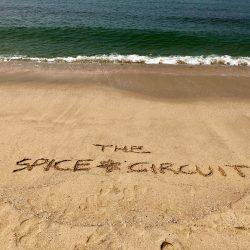 TravelDew on Spice Circuit